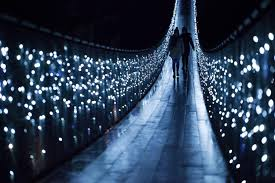 canyon lights vancouver city and capilano suspension bridge
