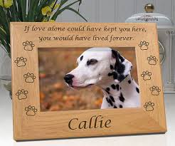 dog memorial personalized pet memorial picture frame awesome stuff 365