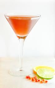 orange martini recipe 14 best skinny vodka cocktail recipe images on pinterest