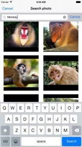 Generador De Memes - descargar generador de memes para iphone