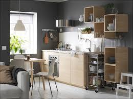 Akurum Kitchen Cabinets by Kitchen Ikea Quartz Countertops Stainless Steel Kitchen Cabinets