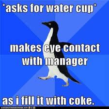 Awkward Penguin Meme Generator - awkward penguin meme generator penguin best of the funny meme