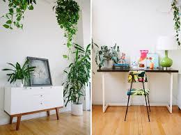plantes dans la chambre déco plantes suspendus decoration chambre plantes d intérieur