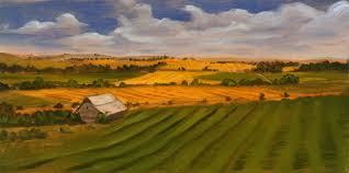 Kansas landscapes images Kansas skyline corn field jpg 1200 599 art pinterest jpg