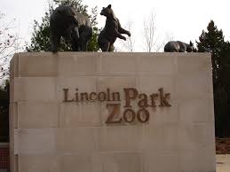 Chicago Lincoln Park Zoo Lights by Lincoln Park Zoo Chicago Landmarks Campusguides At Community