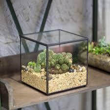 modern geometric polyhedron glass tabletop succulent plant footed square clear glass geometric terrarium box succulent fern moss plant micro landscape terrarium bonsai flower