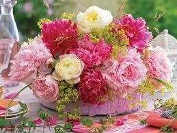 262 best beautiful flower u0027s images on pinterest beautiful