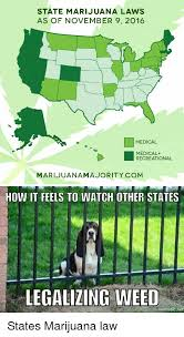 Legalize Weed Meme - legalize weed or don t i ll smoke it anyway yeah beetches