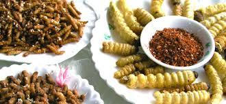 insecte cuisine conso des insectes au supermarché vivons facile