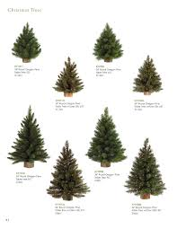catalog x5 topiary u0026 christmas trees