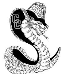 black and white cobra graphic in 2017 photo pictures