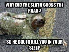 Sloth Meme Generator - pin by norma linda livella on creepy sloth pinterest sloth