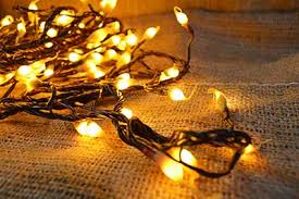 string lights 21 ft in silicone tip brown wire