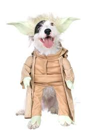 Star Wars Dog Halloween Costumes Pet Couture 9 Ultimate Star Wars Dog Costumes War Dogs