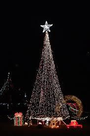 garvan gardens christmas lights 2017 garvan gardens christmas tree lights this is my town pinterest