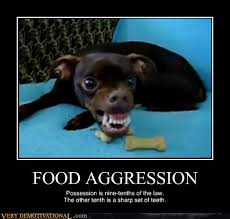 Dog Teeth Meme - on food reactivity nothing personal really darwin dogs