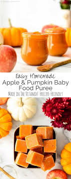 pumpkin foods homemade apple pumpkin baby food puree joyfoodsunshine