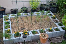 Florida Garden Ideas Florida Gardening Ideas Florida Vegetable Gardening Gardening