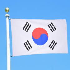 Flag Of South Korea South Korea Flag Multi Country National Flag Banner Festival