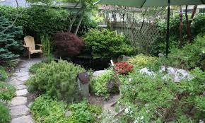 garden of eating u2013 my northern garden