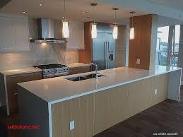 meuble de cuisine encastrable meuble cuisine encastrable pour idees de deco de cuisine nouveau
