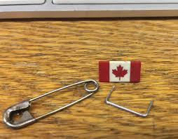 Hatis Flag What Is This A Canadian Flag For Ants Thingsforants