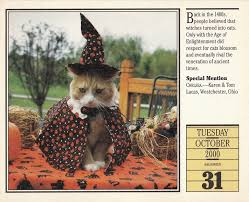 witch costume for cats costumes u0026 decorations american culture