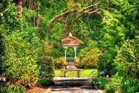 leu gardens leu gardens orlando fl ricardo u0027s photography