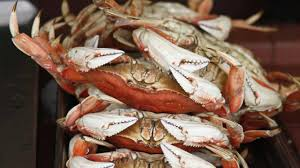 officials say dungeness crab season opens after price set at 2 90