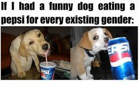 Bepis Meme - funny dog eat a bepis top 23 pics funny pics story