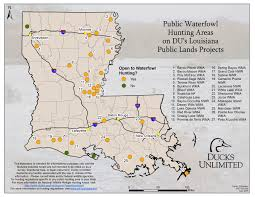Waterfowl Migration Map Public Hunting On Du Projects In Louisiana