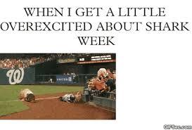 Shark Week Meme - shark week gif find share on giphy