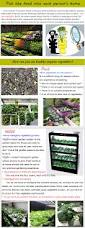 Indoor Vegetable Garden Kit by Wholesale Greenhouse Big Farm Home Garden Grow Kit Indoor Grow