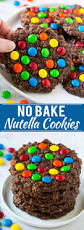 9 no bake cookie recipes dinner at the zoo
