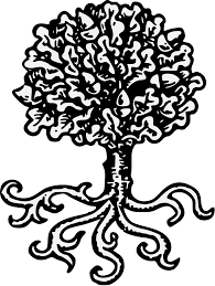White Oak Tree Drawing Oak Traceable Heraldic Art