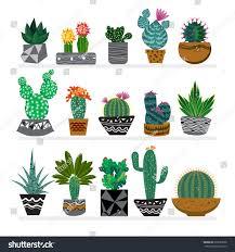 cute hand drawn cactus pots beautiful stock vector 679233838