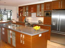 Kitchen Cabinet Designs For Small Kitchens Kitchen Splendid Small Kitchen Design Kitchen Designs For Small