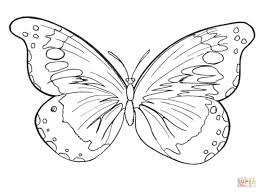 coloring pages of butterfly butterfly coloring page free printable coloring pages