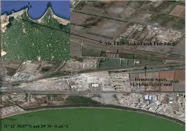location canap figure 1 location of ehab fish farm el mahmoudia canal alexandria