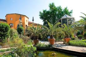 Garden Botanical Botanical Garden Orto Botanico Padua Unesco World Heritage Centre