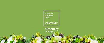 greenery is pantone u0027s color of the year for 2017