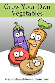 vegetable garden for beginners grow your own food and save