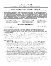 business analyst resume exles business analyst resume sle powerful photograph professional