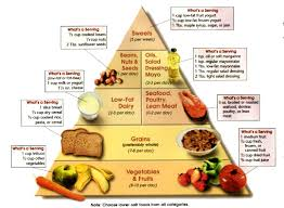 food pyramid articles house call md