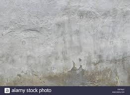 old white and grey painted lime plaster concrete wall with stock