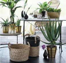 Home Decor Stores Like Urban Outfitters Where To Shop For Home Goods And Furniture Online Racked