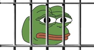 Pepes Memes - why is pepe the frog a hate symbol now the mary sue
