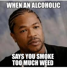 Weed Smoking Meme - when an alcoholic says you smoke too much weed smoking meme on sizzle