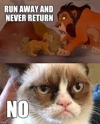 No Grumpy Cat Meme - grumpy cat meme imgflip