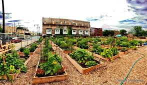 home american community garden association